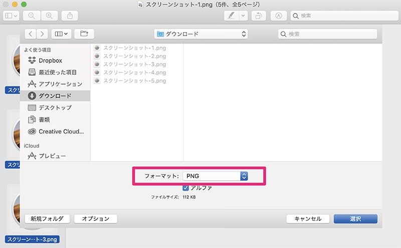 ファイルフォーマットを選択